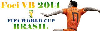 Foci VB 2014 Brazilia